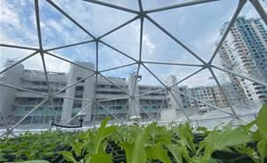 Singapore's SPTel helps farmers go digital