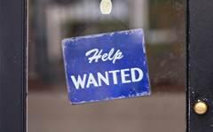 Tech sector defies slowing job market