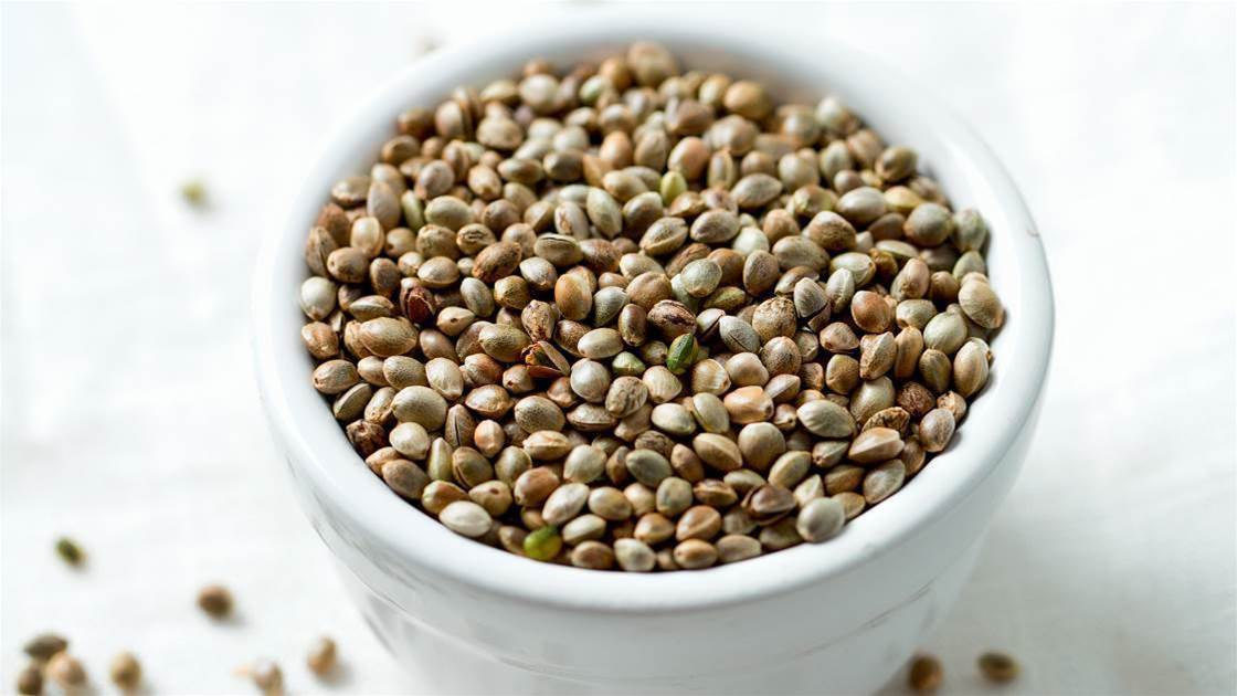 Should You Be Eating Hemp Foods?