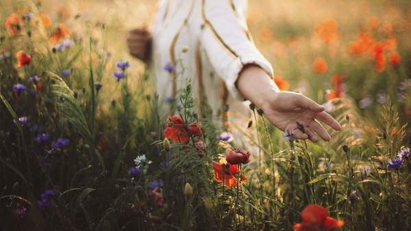 How to Harness the Mind-Healing Powers of Nature's Unbelievable Beauty
