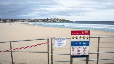 Dr Dave: A Complete Guide to the 'Big C' Virus For Surfers.