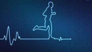 Sports data analytics drives next-level performance