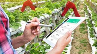 Victorian govt to pump another $15m into agtech