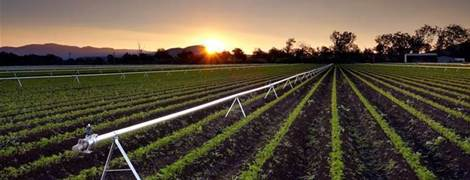 Victoria's Western Water used IoT to monitor irrigators