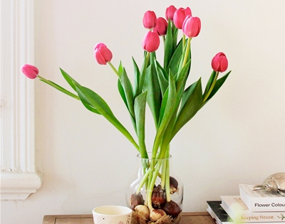 ooh! tulip deliveries for melbourne and sydney