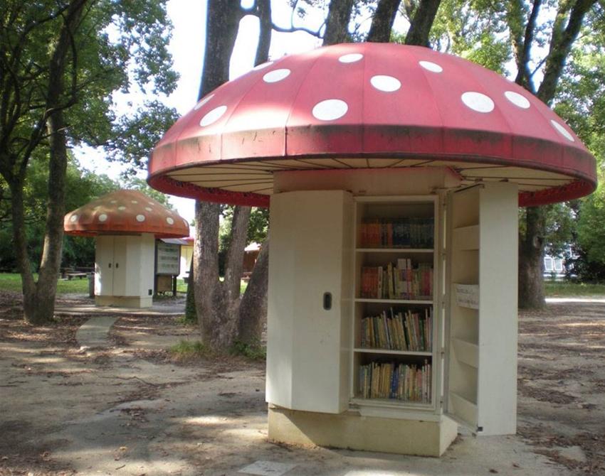 the mushroom library