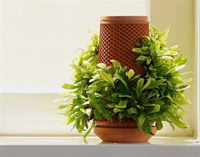the terraplanter is an 'inside-out' planter
