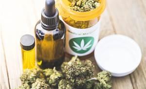 MGC Pharma taps RMIT to build 'Google of medicinal cannabis'