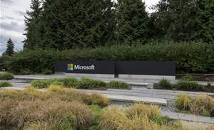 Microsoft's green push rewards six local AI-backed projects