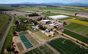 Sydney Uni opens new $12m digital farming centre