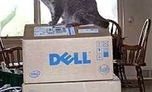 Ancient update driver endangers hundreds of millions of Dell computers