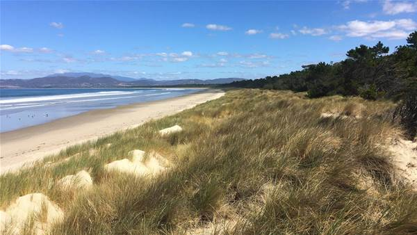 Clayton, DeVries & Pont to design Tassie beach course
