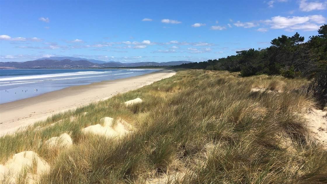 Clayton, DeVries & Pont to design Tassie beach course