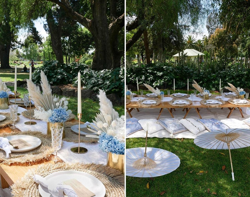 how to plan a fancy picnic