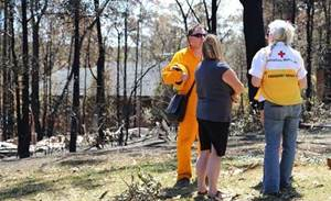 Bots hit up Australian Red Cross 900 times for bushfire donations