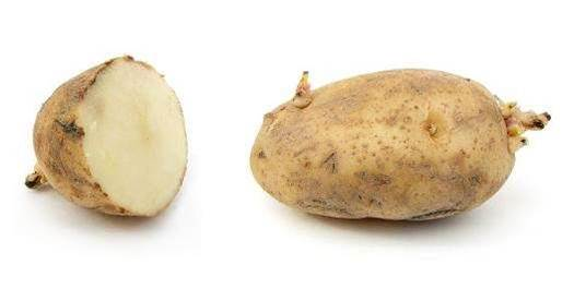 Potato farmer trials Vodafone 'hub' to boost connectivity