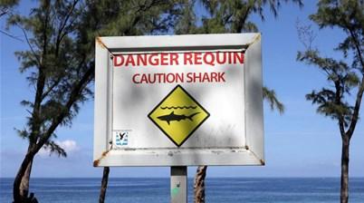 Reunion Island: Shark Attacks, Firing Surf and Fake News