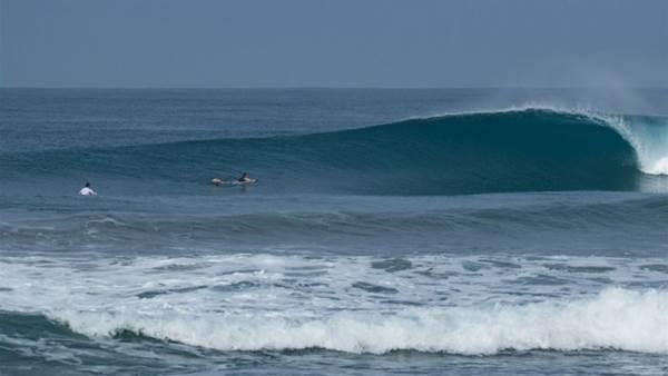 Read: Hanging in South Sumatra