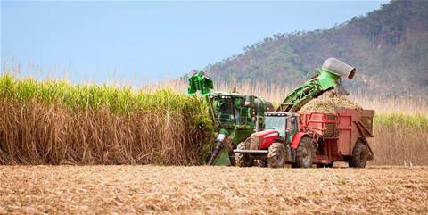 Qld cane farmers to create sugar blockchain