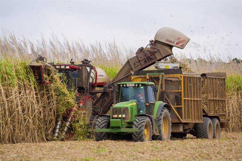 Queensland sugarcane body trials KPMG blockchain platform