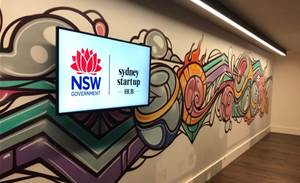 Microsoft to launch Sydney start-up accelerator