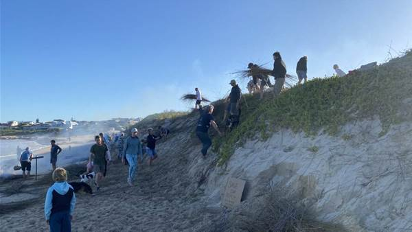 Surfers Claim Back Beach