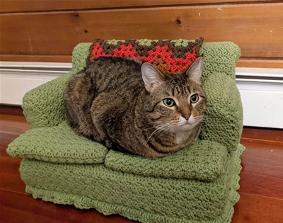 how to make a crocheted couch for your kitty