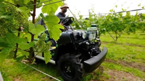 Treasury Wine Estates to trial robots for yield prediction, crop spraying