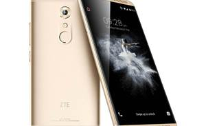 ZTE ceases main business ops due to US ban