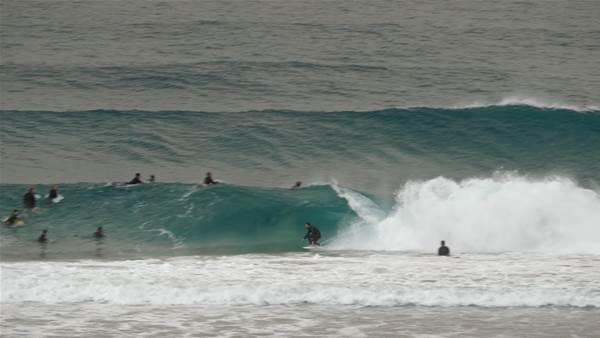 It Appears the Sand at Snapper is Quite Good