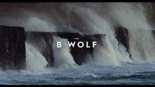 The B Wolf