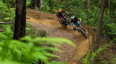 Mountain biking on the Sunshine Coast