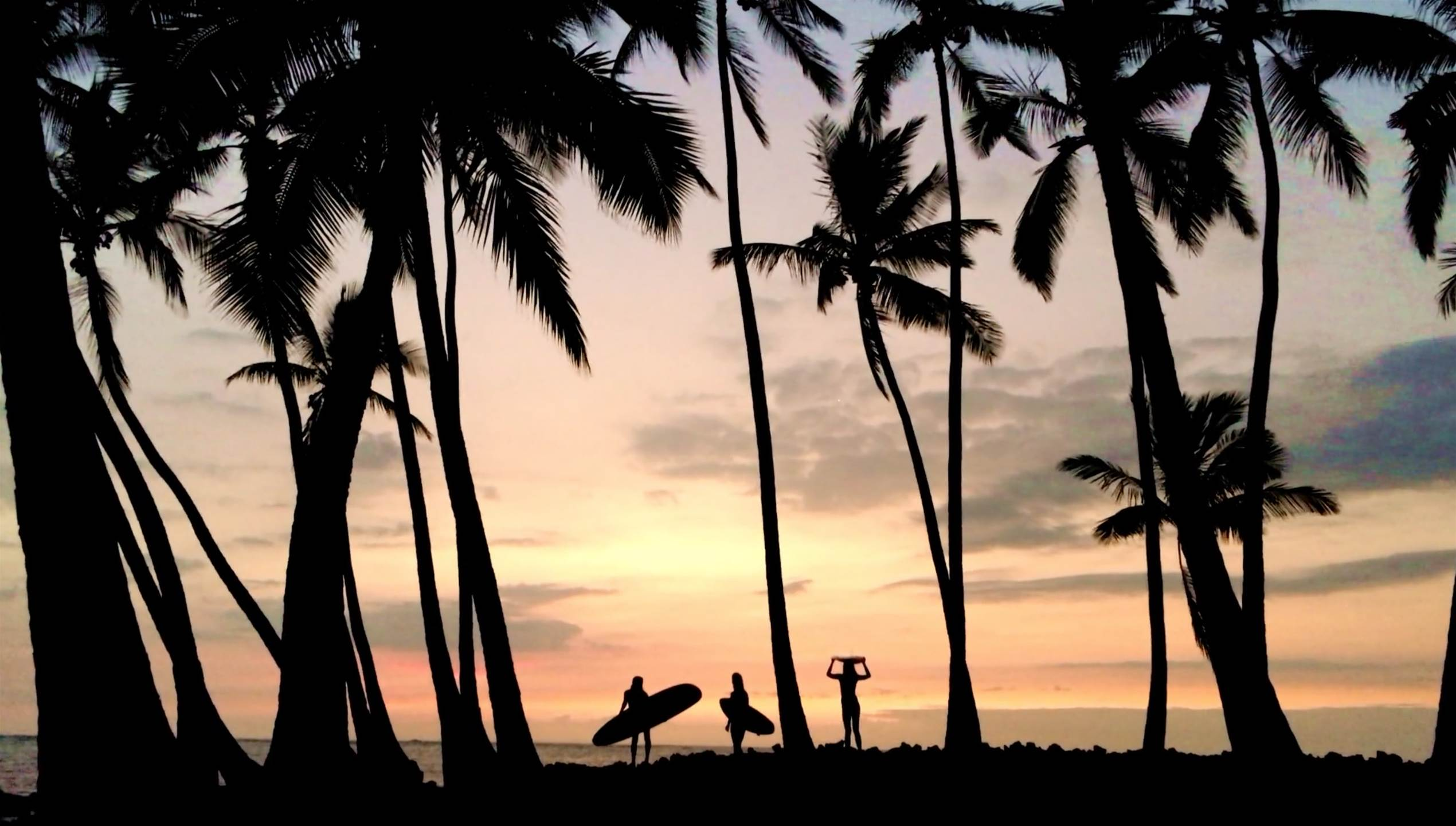 A Hypnotic Showreel From Morgan Maassen