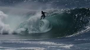 Watch: The Rare Cape Solander Left