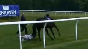 WATCH: Television presenter incredibly catches bolting horse