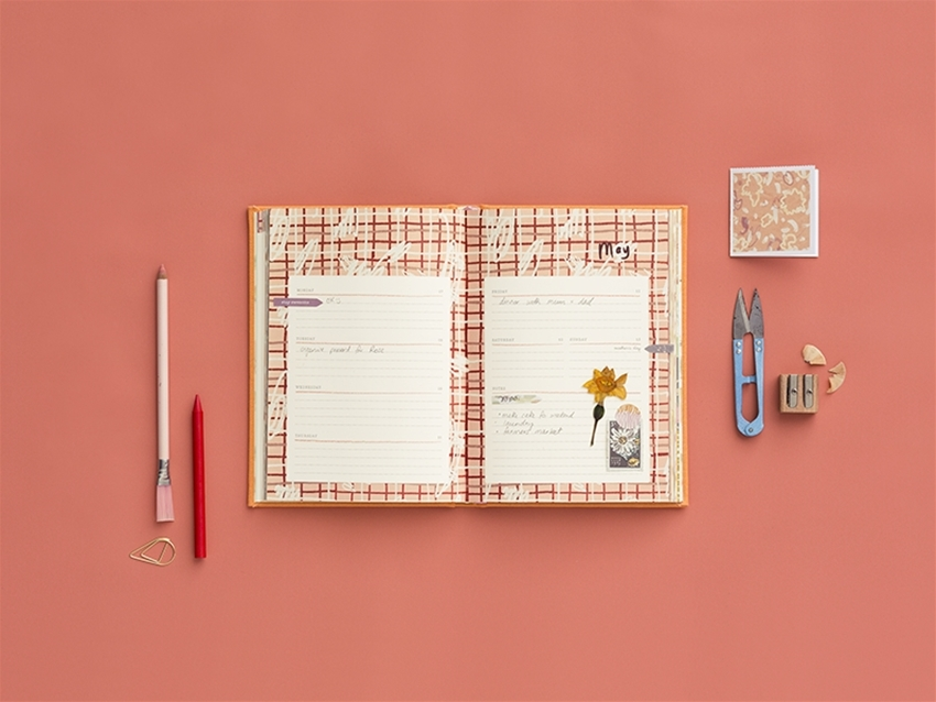 a little chinwag with frankie's 2018 diary illustrator, caitlin shearer