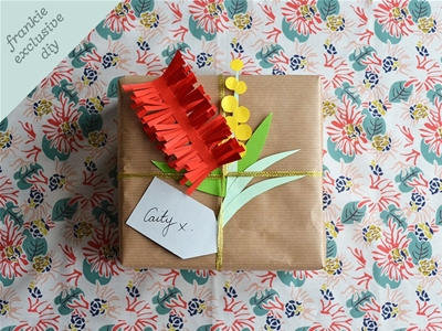 frankie exclusive diy: native flora gift decoration