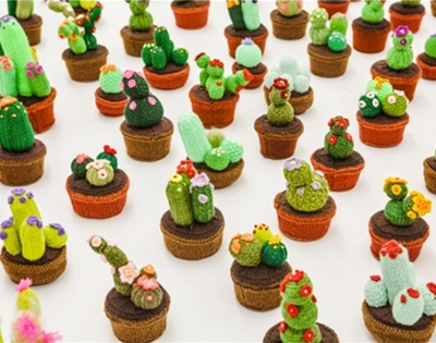 stitched up succulents