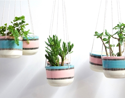licorice allsorts hanging planters