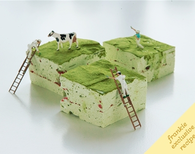 frankie fodder: matcha and strawberry marshmallows