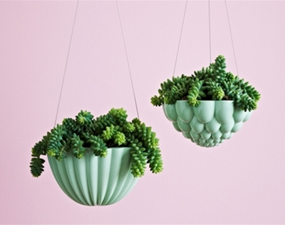 stuff mondays - angus & celeste hanging planters
