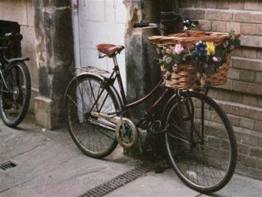 she spoke bike festival