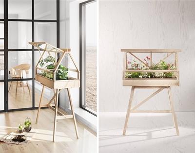the miniature greenhouse