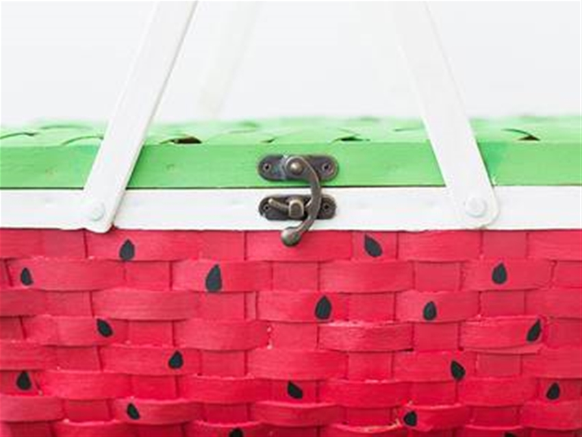 diy watermelon picnic basket