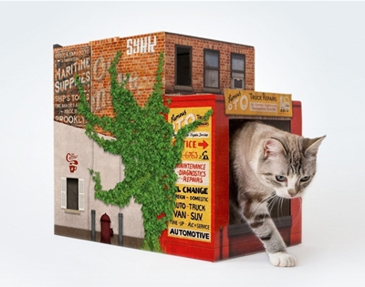brooklyn houses for cats