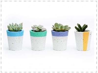 stuff mondays - pop plant