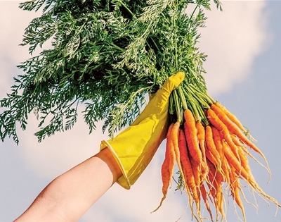 gardening for climate change