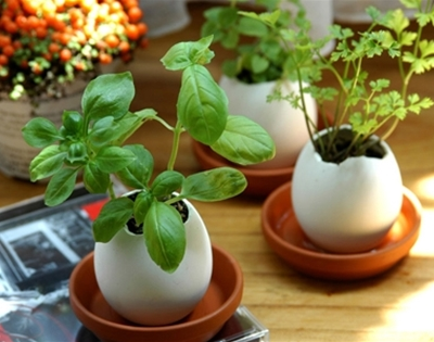eggling planters