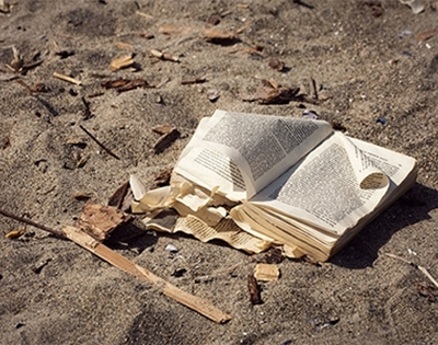 frankie's summer beach reads: books about the sea