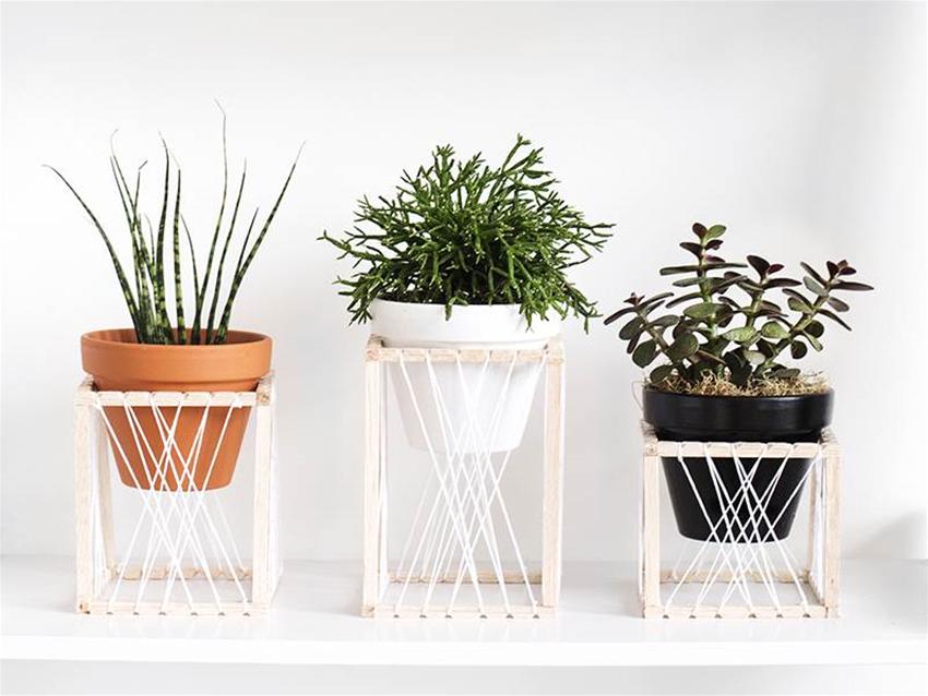 diy plant throne